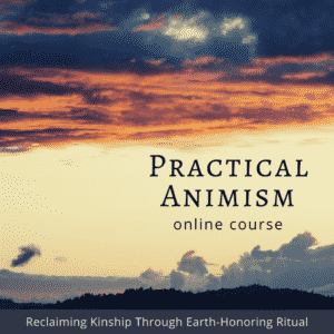 Practical Animism.fb.ig.w Out.date